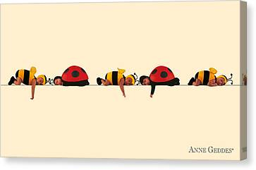 Baby Bees And Lady Bugs Canvas Print by Anne Geddes