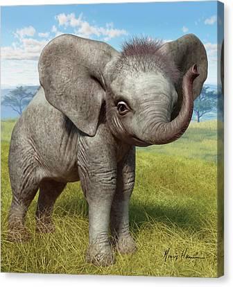 Baby Elephant Canvas Print by Gary Hanna
