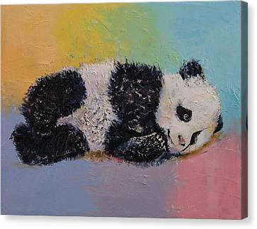 Baby Panda Rainbow Canvas Print by Michael Creese