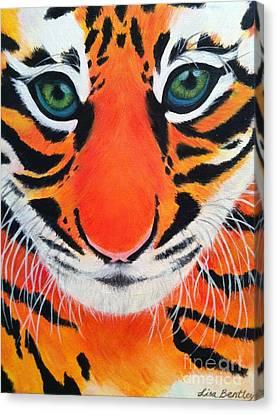 Baby Tiger Canvas Print by Lisa Bentley