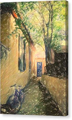 Back Door Canvas Print by Taylan Soyturk