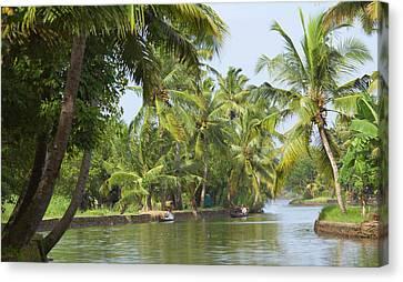 Backwaters Of Kerala, India Canvas Print by Keren Su