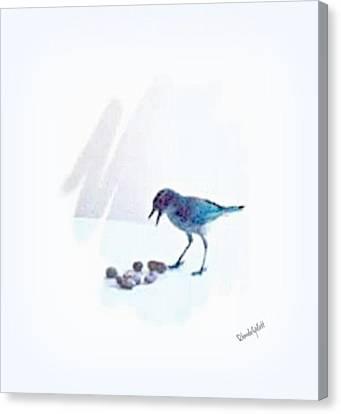 Backyard Bird Canvas Print by YoMamaBird Rhonda