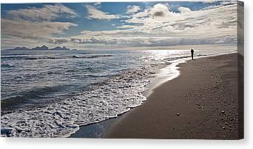 Bakkafjara Beach, South Coast, Iceland Canvas Print by Panoramic Images