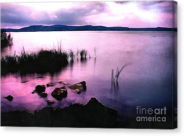 Balaton By Night Canvas Print by Odon Czintos