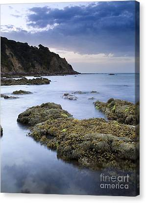 Balcombe Point Mount Martha Canvas Print by Tim Hester