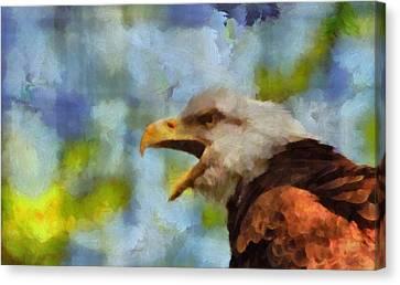 Bald Eagle Portrait Canvas Print by Dan Sproul