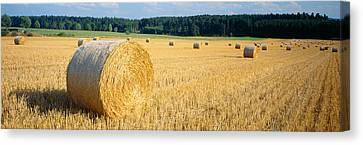 Bales Of Hay Southern Germany Canvas Print by Panoramic Images