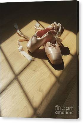 Ballet Slippers Canvas Print by Diane Diederich