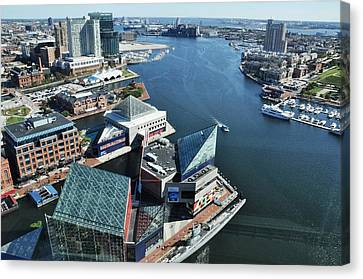 Baltimore Harbor Canvas Print by Andrew Dinh