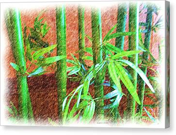 Bamboo #1 Canvas Print by Luther   Fine Art