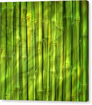 Bamboo Dream Canvas Print by Lutz Baar