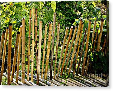 Bamboo Fencing Canvas Print by Lilliana Mendez
