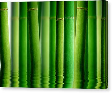 Bamboo Forest With Water Reflection Canvas Print by Aged Pixel