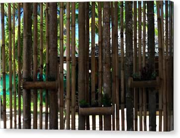 Bamboo View Canvas Print by Georgia Fowler