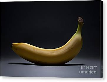 Banana In Limbo Canvas Print by Dan Holm