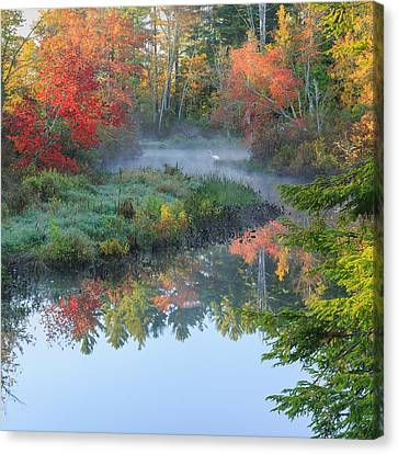 Bantam River Autumn Square Canvas Print by Bill Wakeley