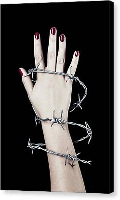 Barbed Wire Canvas Print by Joana Kruse