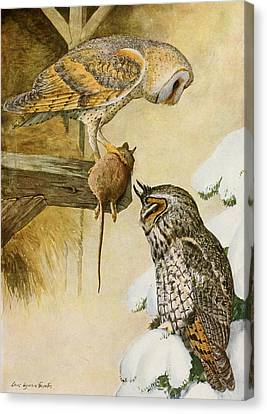 Barn And Long Eared Owls Canvas Print by Louis Agassiz Fuertes