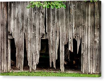 Barn Boards - Rustic Decor Canvas Print by Gary Heller