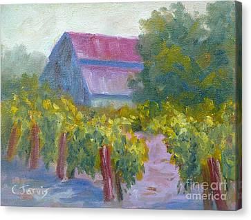 Barn In Vineyard Canvas Print by Carolyn Jarvis