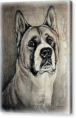 Barney The Dog Canvas Print by Andrew Read