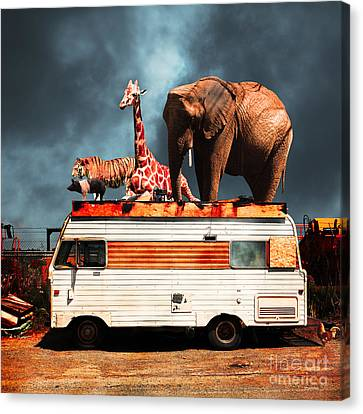 Barnum And Bailey Goes On A Road Trip 5d22705 Square Canvas Print by Wingsdomain Art and Photography