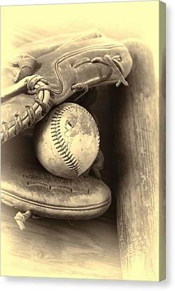 Baseball And Baseball Bat Canvas Print by Dan Sproul