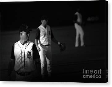 Baseball Days Canvas Print by Karol Livote