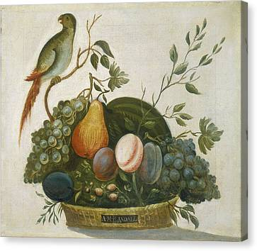 Basket Of Fruit With Parrot Canvas Print by Celestial Images