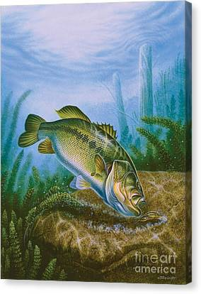 Bass And Crawdad Canvas Print by Jon Q Wright