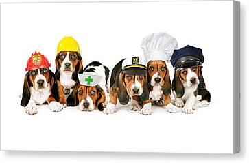Bassets In Work Hats  Canvas Print by Susan  Schmitz