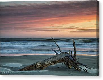 Battered Driftwood Canvas Print by Phill Doherty