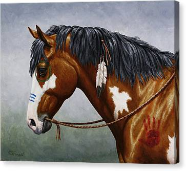 Bay Native American War Horse Canvas Print by Crista Forest