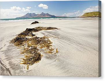 Bay Of Laig At Cleadale Canvas Print by Ashley Cooper