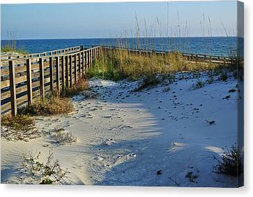 Beach And The Walkway  Canvas Print by Michael Thomas