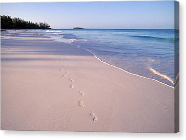Beach Canvas Print by Anonymous