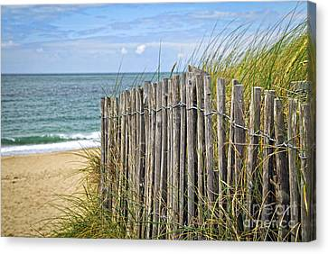 Beach Fence Canvas Print by Elena Elisseeva