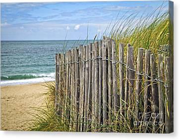 Beach Fence Canvas Print by Elena Elisseeva