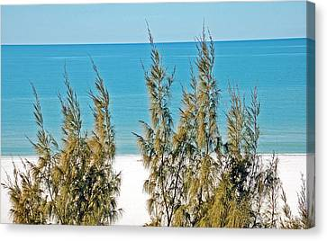 Beach Front View Canvas Print by Aimee L Maher Photography and Art Visit ALMGallerydotcom