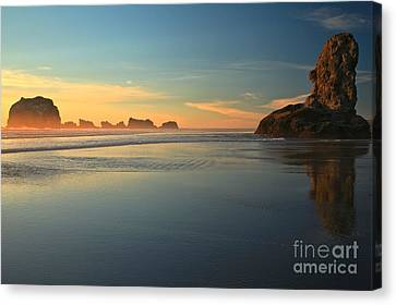 Beach Rudder Canvas Print by Adam Jewell
