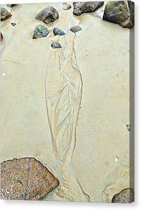 Beach Sand 4   Canvas Print by Marcia Lee Jones