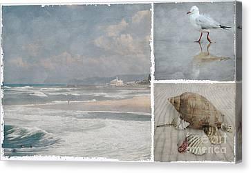 Beach Triptych 1 Canvas Print by Linda Lees