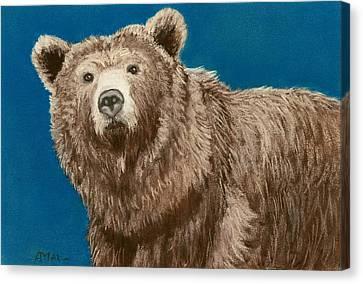 Bear Canvas Print by Anastasiya Malakhova