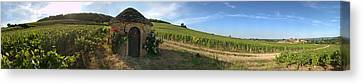 Beaujolais Vineyard, Saules Canvas Print by Panoramic Images
