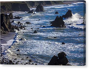 Beautiful California Coast Canvas Print by Garry Gay