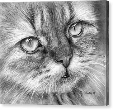 Beautiful Cat Canvas Print by Olga Shvartsur