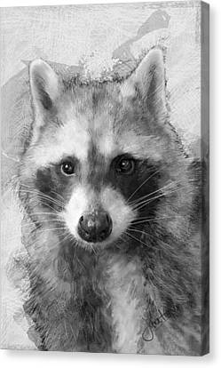 Beautiful Raccoon Canvas Print by Janet Garcia