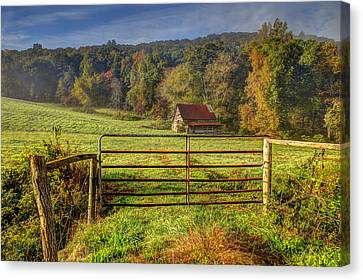 Beautiful Reds Of Autumn Canvas Print by Debra and Dave Vanderlaan