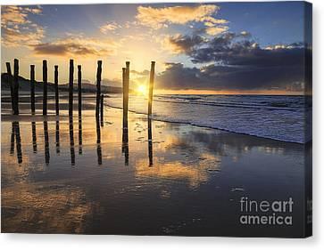 Beautiful Sunset Dunedin New Zealand Canvas Print by Colin and Linda McKie